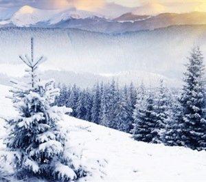iarna-nkou-400-x-265